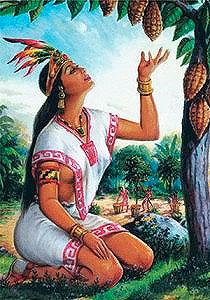Живое какао ацтеков