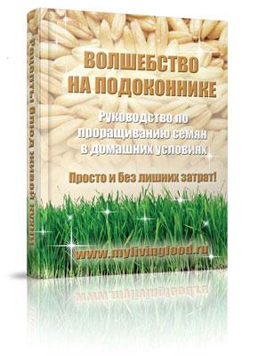 Руководство по проращиванию семян дома
