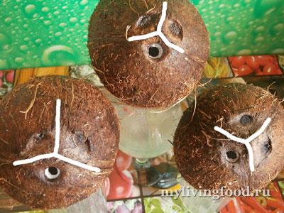 Как легко открыть кокос