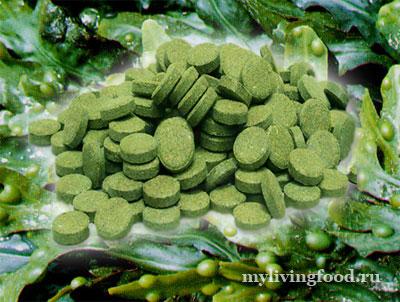 Морские водоросли это пища-лекарство