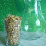1 стакан проростков