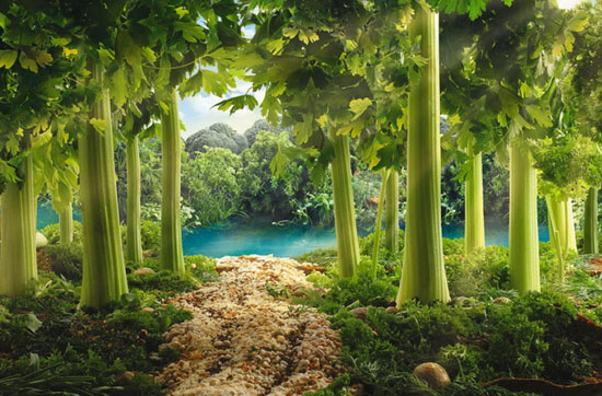 Сельдереевый лес