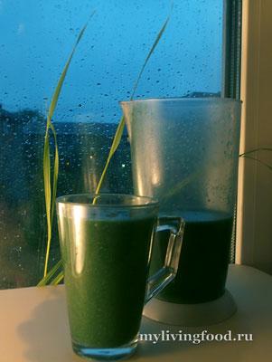 Зеленый коктейль с «домашними дикоросами»