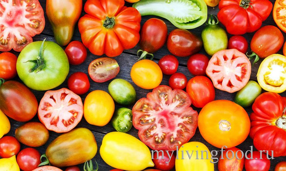 Самые урожайные сорта томатов