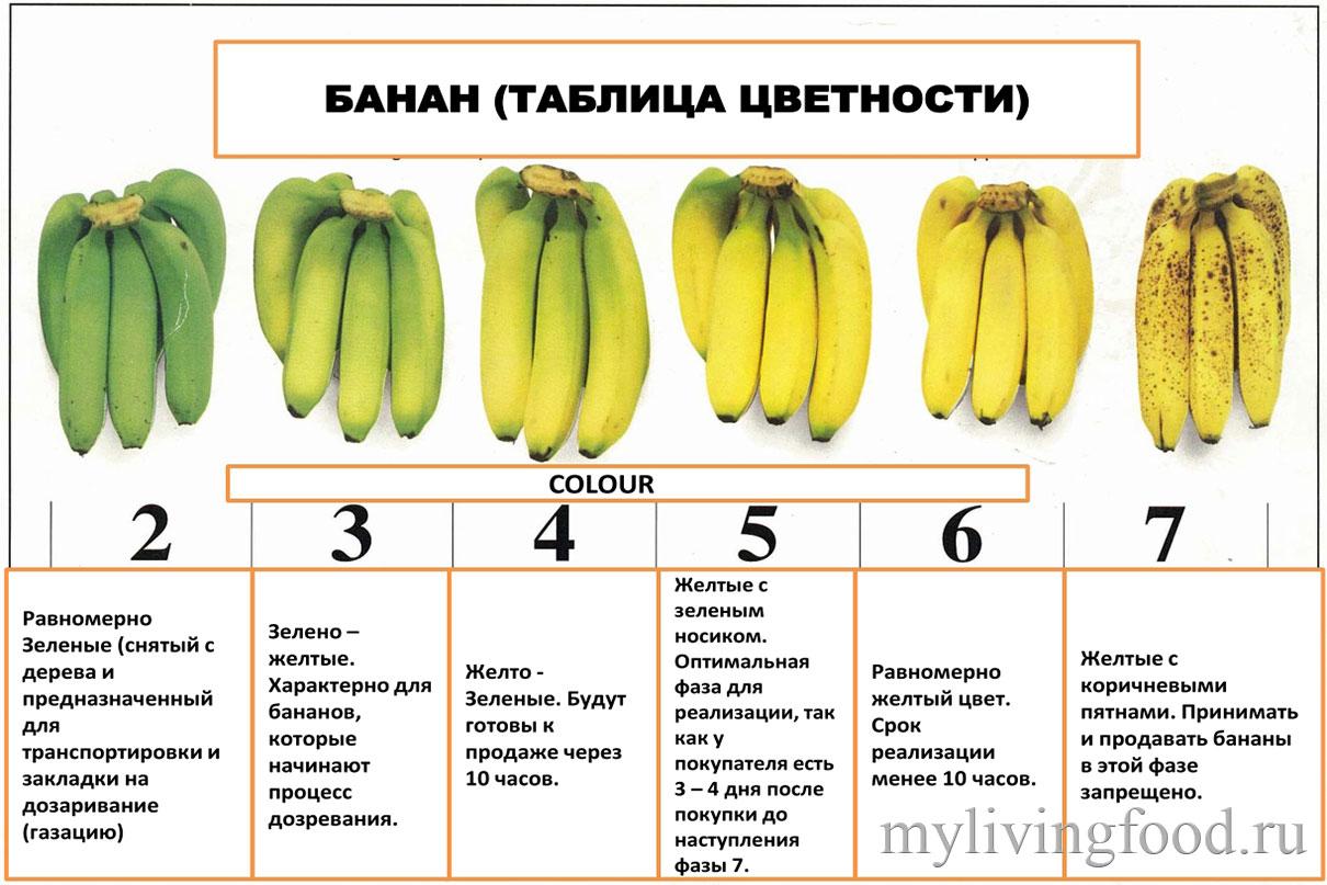 Как хранить банан